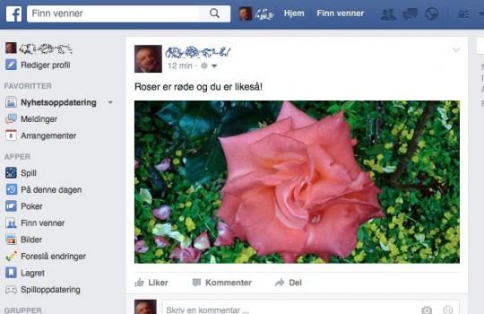 Post riktige bildestørrelser for Facebook