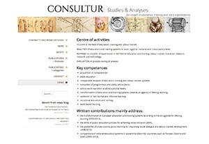 Consultur - studies & analyses